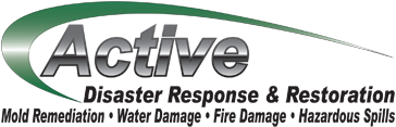 Active Disaster Response & Recovery